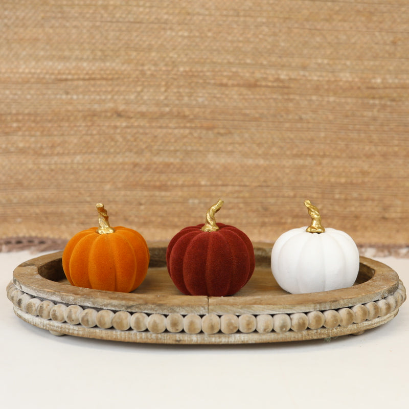 Velvet Pumpkins - 3 colors