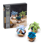 Ann Williams Craft Crush Felt Succulent Pots