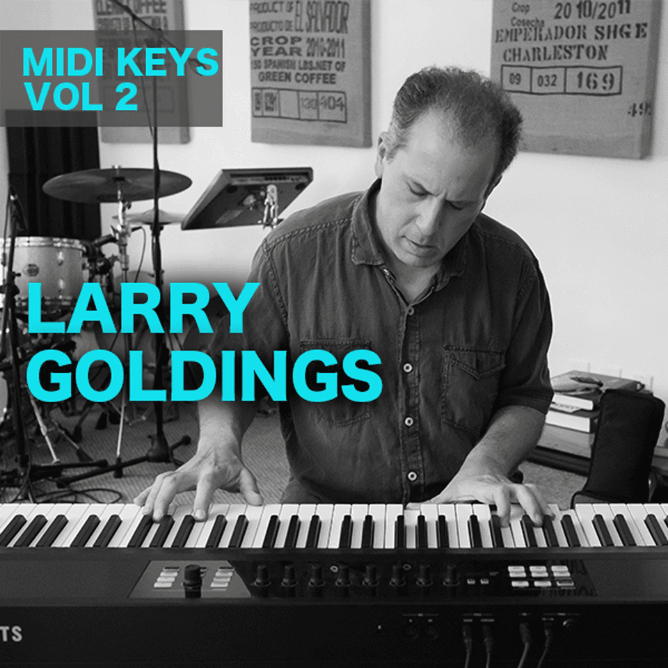 The Loop Loft Loop Pack Larry Goldings MIDI Keys Vol 2