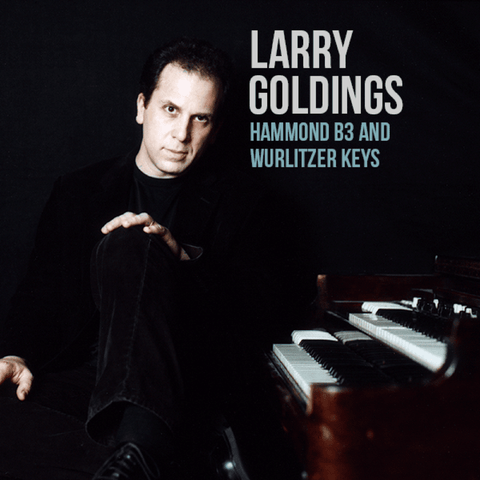 The Loop Loft Loop Pack Larry Goldings Vintage Keys