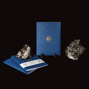 Night Sky Notebook - Salix Intimates