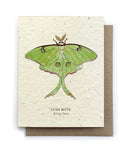 Luna Moth Plantable Seeded Card - Salix Intimates