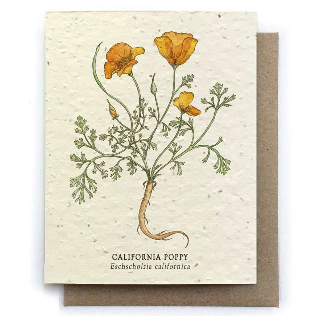 California Poppy Plantable Seeded Card - Salix Intimates