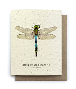 Dragonfly Plantable Seeded Card - Salix Intimates