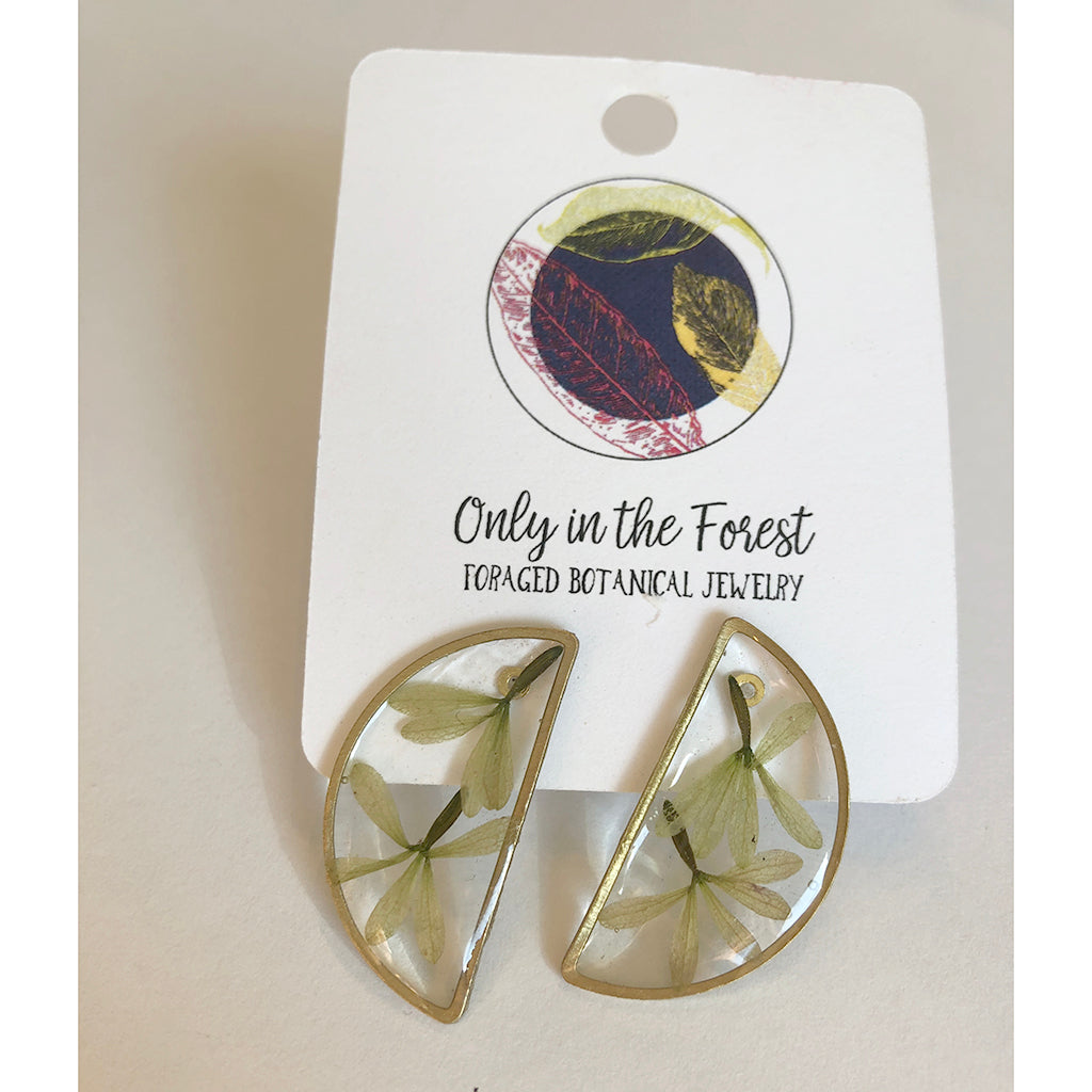 Half Moon Foraged Botanical Studs - Salix Intimates