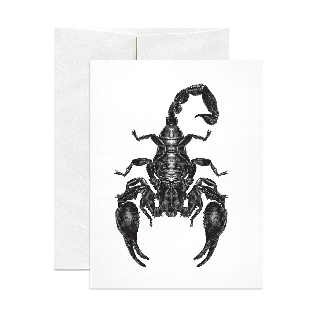 Emperor Scorpion Greeting Card - Salix Intimates