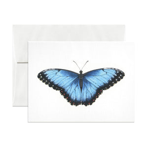 Blue Morpho Greeting Card - Salix Intimates