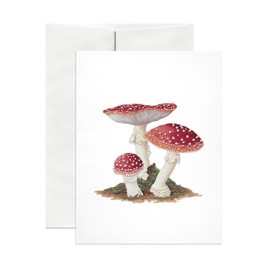 Amanita Muscaria Greeting Card - Salix Intimates