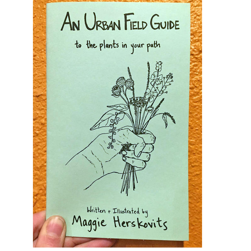 An Urban Field Guide to the Plants in Your Path