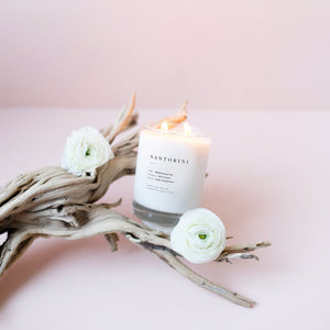Escapist Collection Candles - Salix Intimates