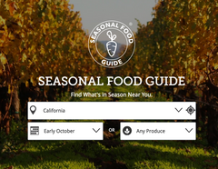 Seasonal Food Selector