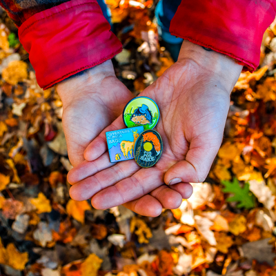 Flowfold Enamel Pins in open hands with fall leaves in background