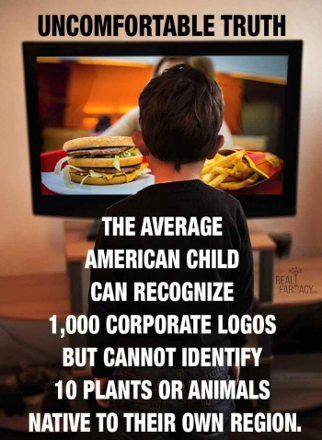 Image:  Diaspora - Influence of corporate logos