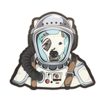 Captain Sully Sticker 3-Pack