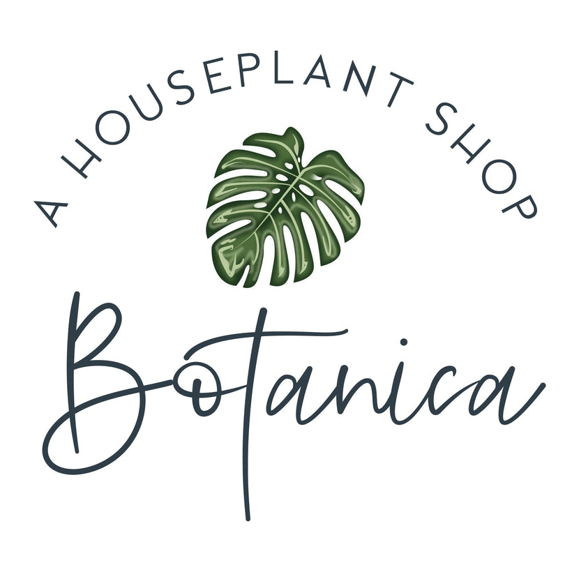 Botanica Gift Card + Greeting Cards