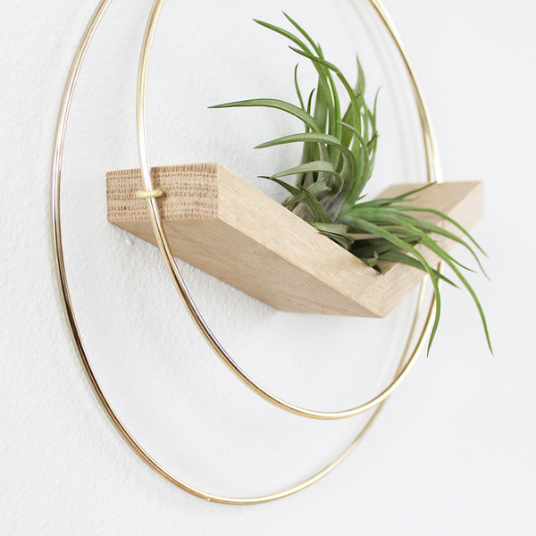 Braid & Wood Plant Hangers