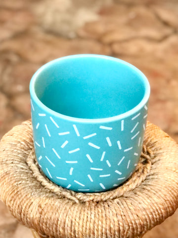 "Sprinkle Pot 4"" White and Teal"