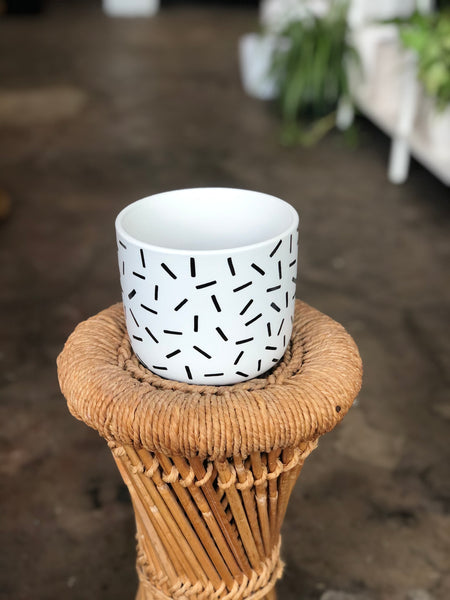 "Sprinkle Pot 4"" White and Black"