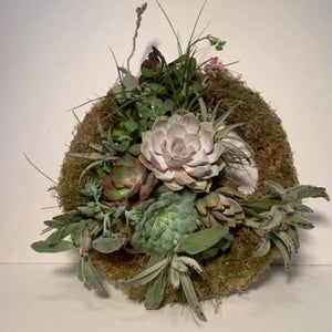 Living PeaceSign Garden Arrangement -10""
