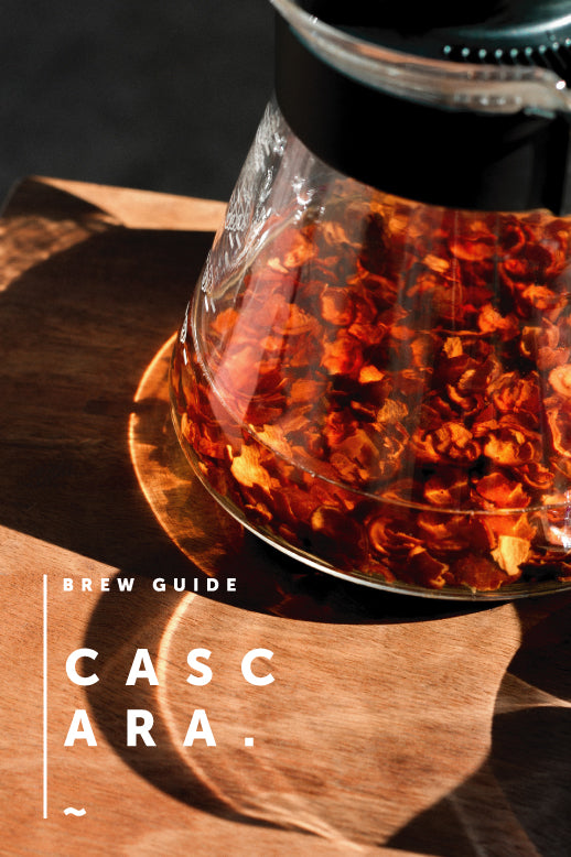 Brew Guides : Cascara Tea