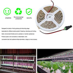 Plant Grow Lights strip