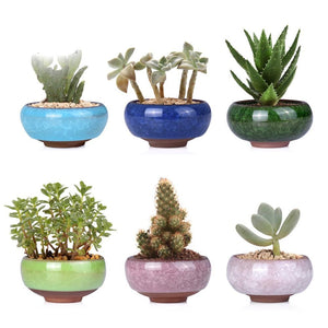Chinese Ice-crack Style Ceramic small plant containers