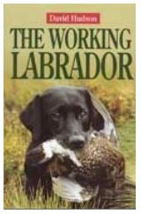 David Hudson: The Working Labrador