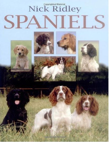 Nick Ridley: Spaniels