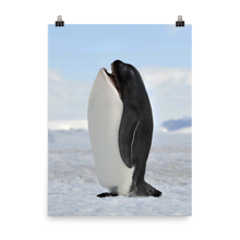 Load image into Gallery viewer, Pengwhale - Print