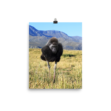 Load image into Gallery viewer, Ostrilla - Print