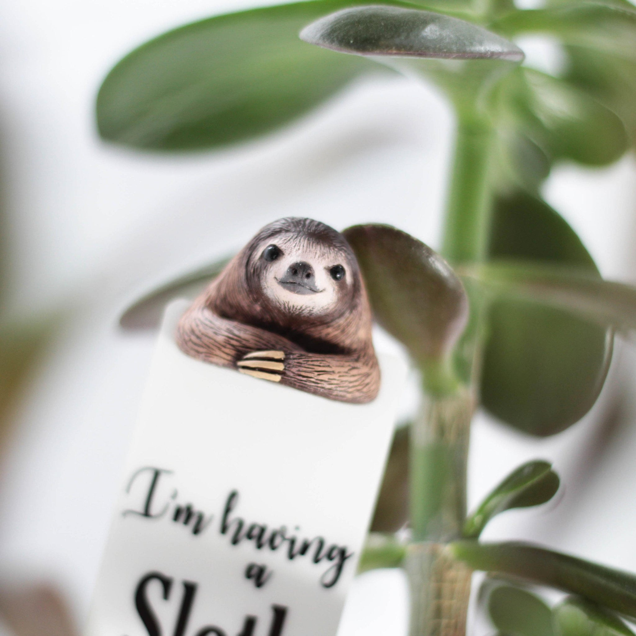 ... Load image into Gallery viewer, Sloth Gifts ...