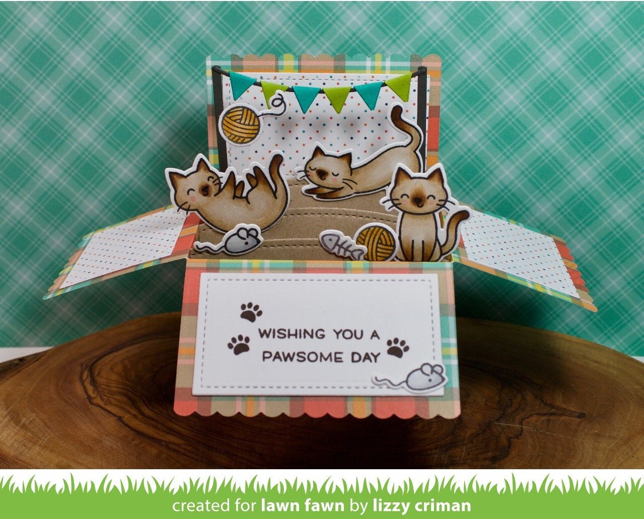 scalloped box card pop-up