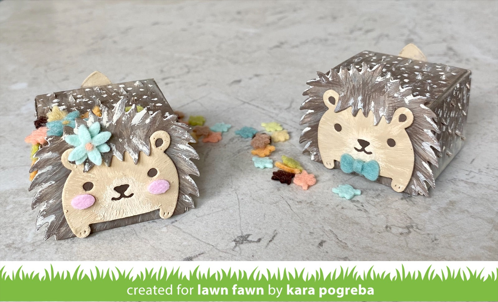 tiny gift box hedgehog add-on
