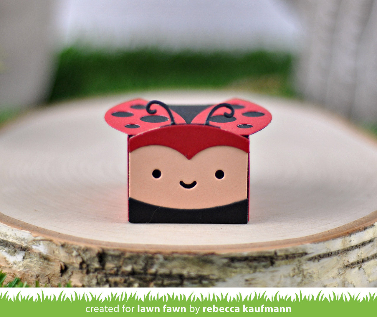 tiny gift box ladybug add-on