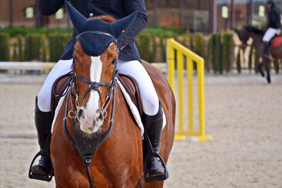 Why you should read safety stirrup reviews