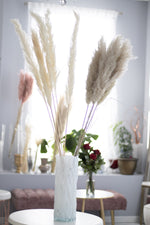 Light Beige  European Pampas Grass in House of Fiori Studio