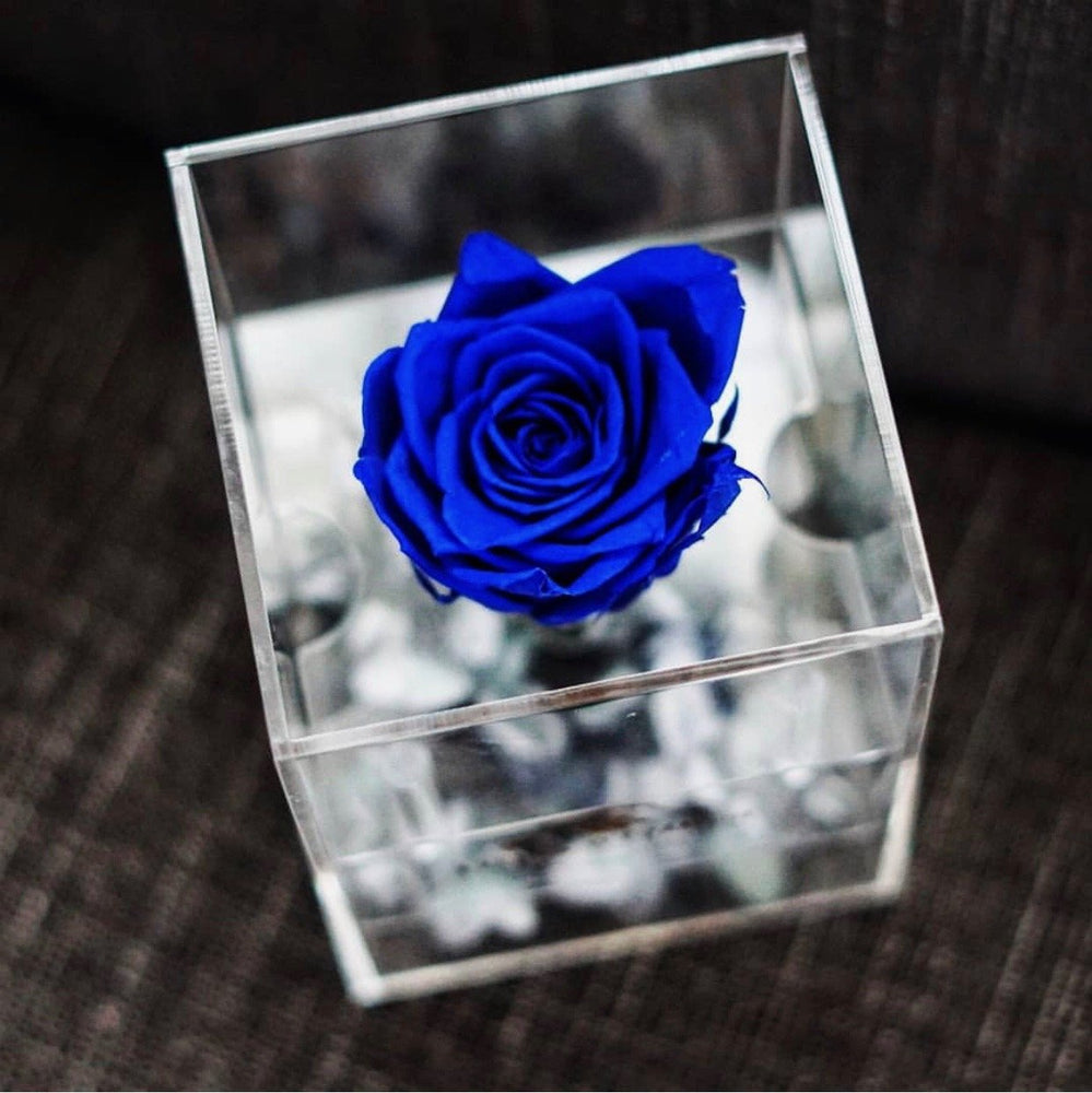 Purest Crystal Box by Fleurs D'épargne | Red Deer Florist | House of Fiori