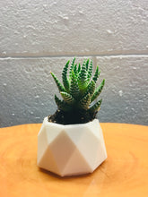 Load image into Gallery viewer, Tea light or succulent holder