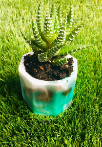 Tea light or succulent holder