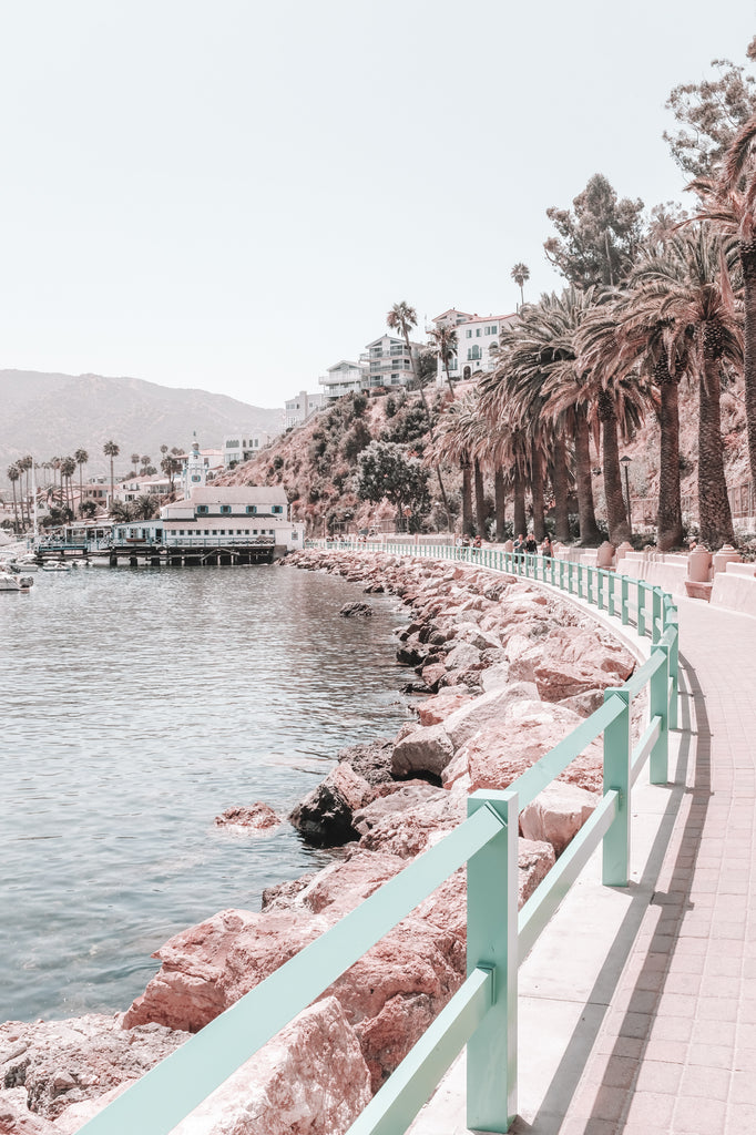 What to do on catalina island