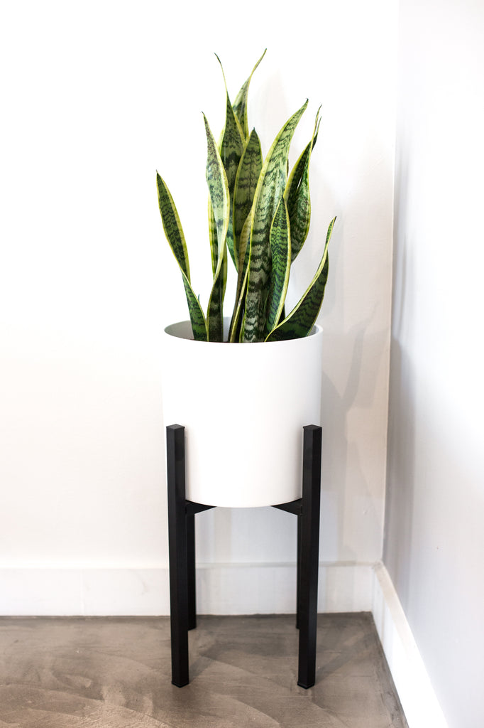 affordable mid century modern plant stand