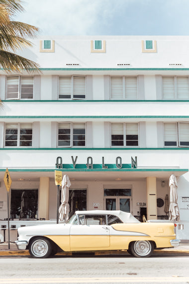 the avalon hotel south beach miami