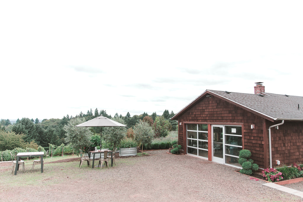 Best wineries in Willamette Valley
