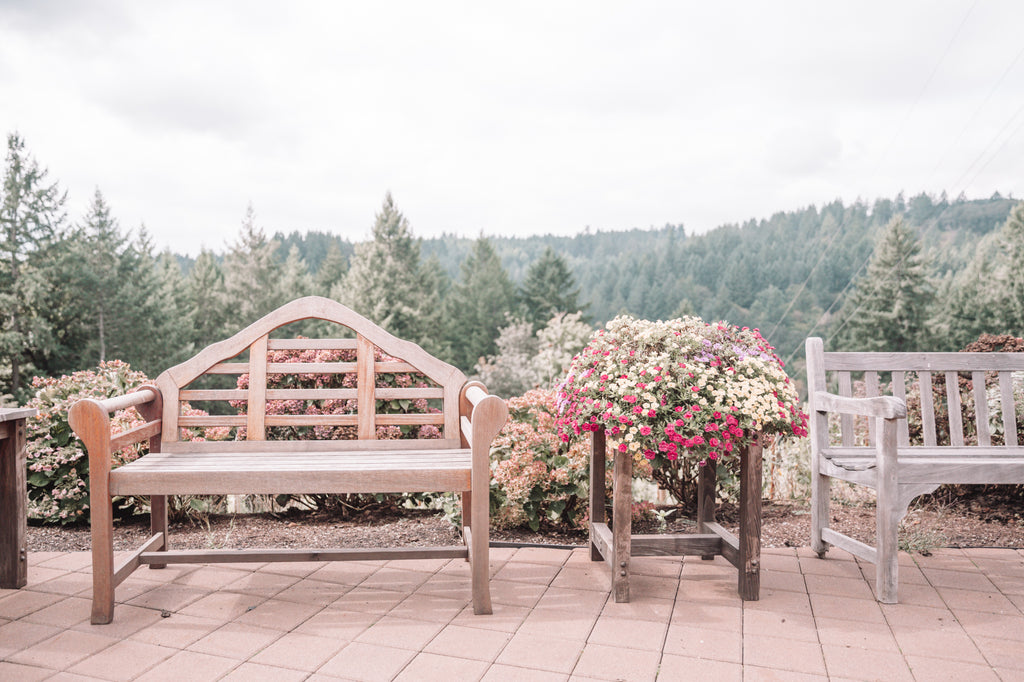 Most scenic wineries in Willamette Valley