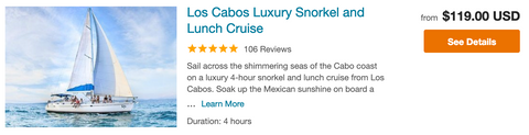 snorkel and lunch cruise cabo