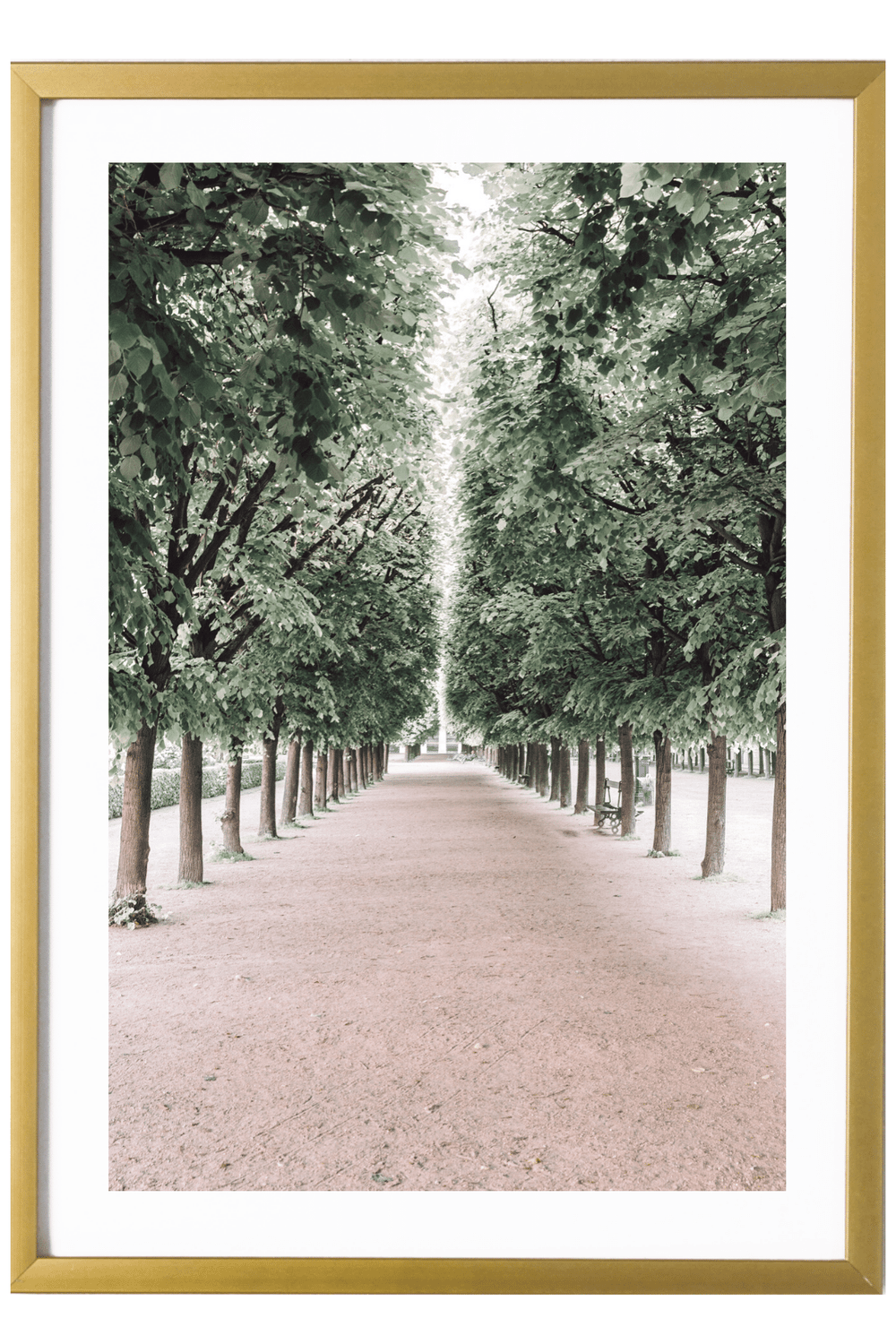 Paris Art Print - Palais Royal #3