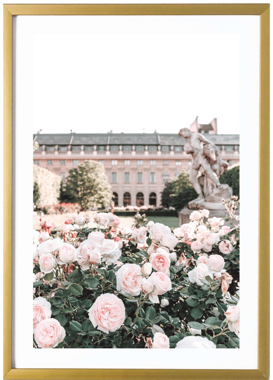 SALE - Paris Print - Palais Royal #2 24x36