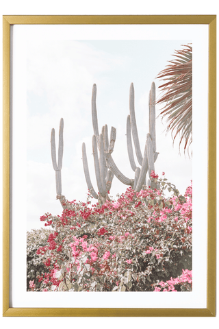 Tropical Print - Virgin Gorda Print - Cacti #1