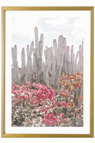 Tropical Print - Virgin Gorda Print - Cacti #4