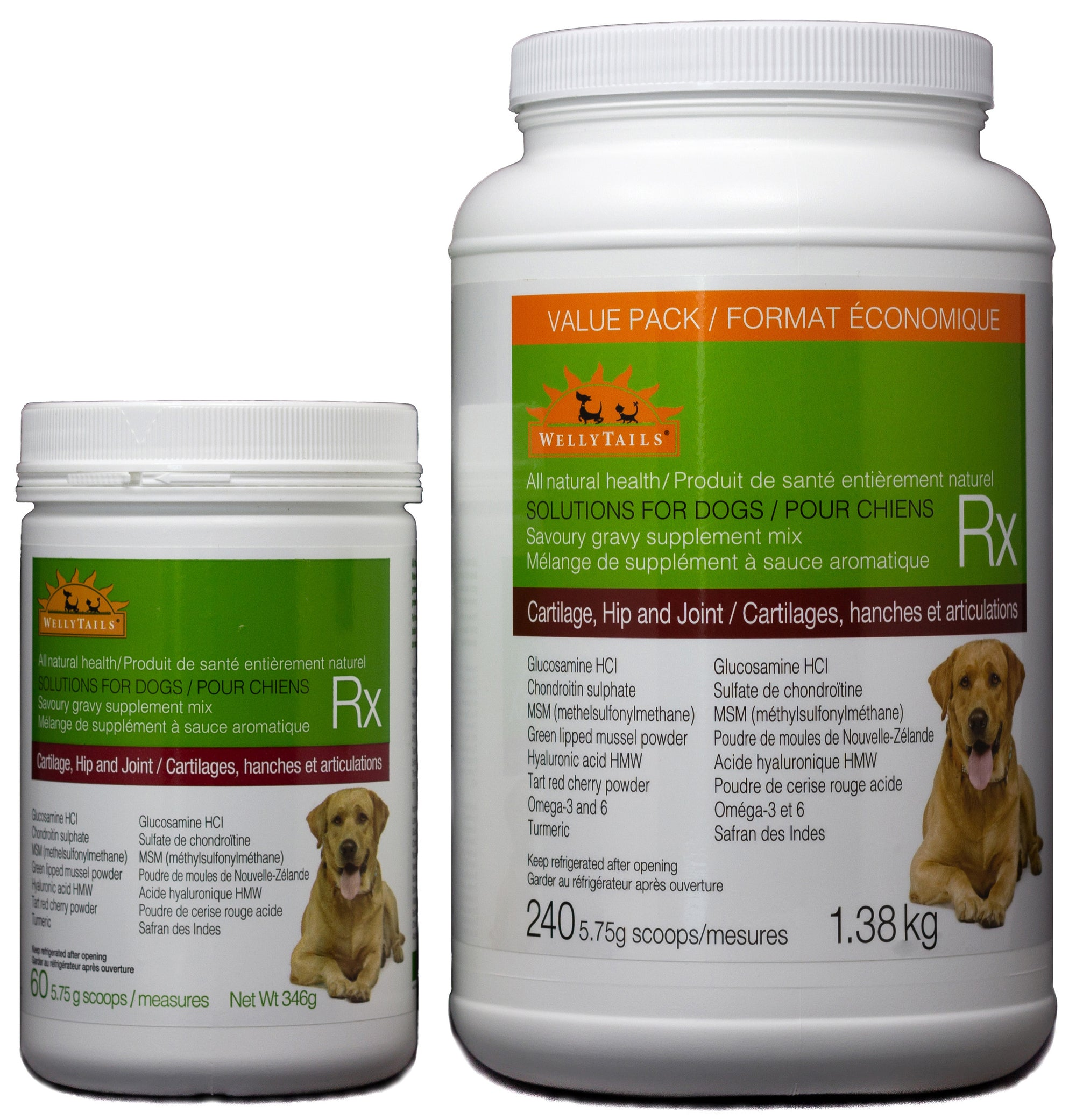 Veterinary Treatment Options for Dogs with Arthritis